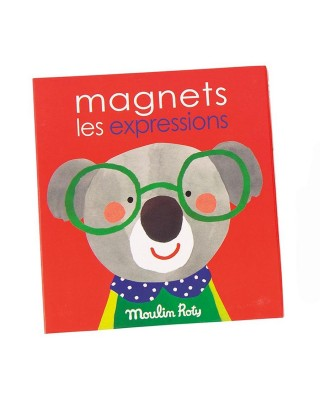Gioco Magnetico Espressioni 3+